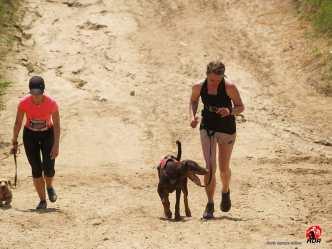 HARD DOG RACE - 3
