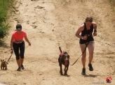 HARD DOG RACE - 1